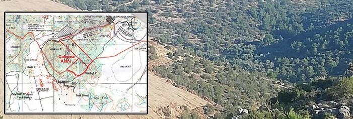 Karaburun'da GES projesi için binlerce çam ağacı kesilecek